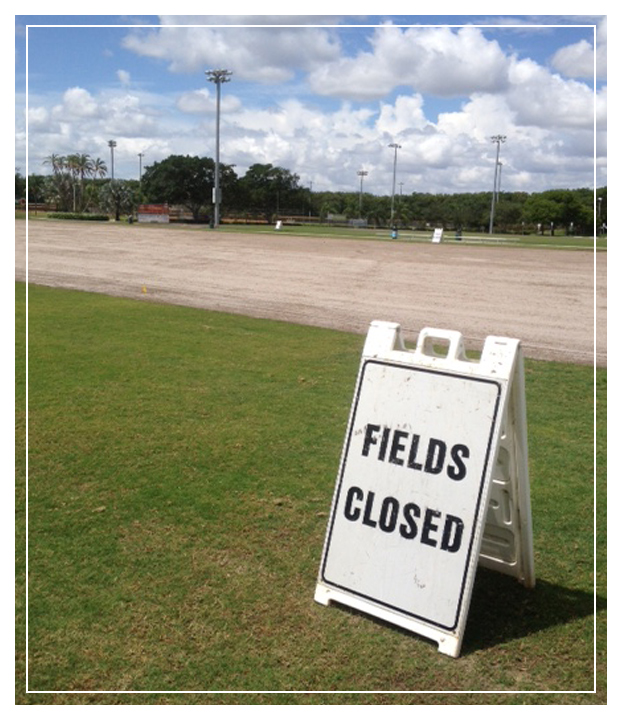 Field Closed Sodding (Framed)