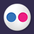 Flickr Media Icon