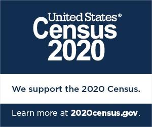 Census 2020 - Badge